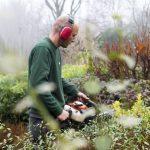 Heg snoeien tuinonderhoud